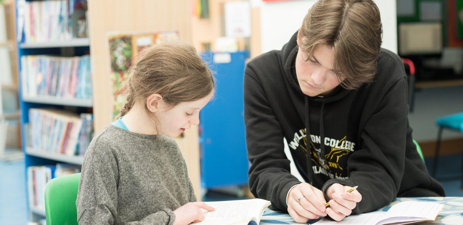 Teenager boy tutoring young girl