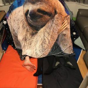 sloth blanket den