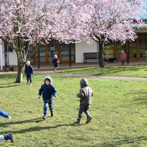 Children having an Easter egg hunt in school field