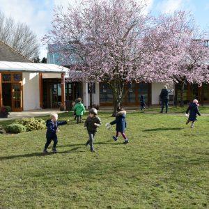 school children playing under blossom trees