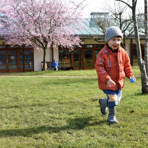 boy on school grounds with blossom trees