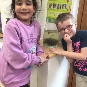 school children with frogspawn