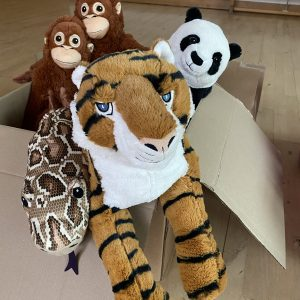 box of stuffed toy animals tiger panda monkeys