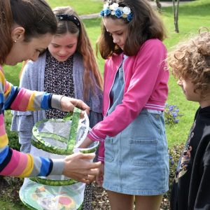 group of children looking at butterflies in a net carry bag