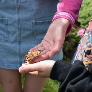 children holding butterflies