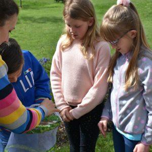 children releasing butterflies