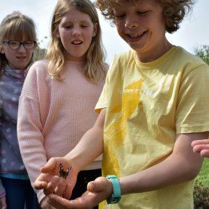 school children releasing a butterfly