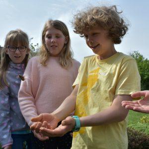 children watching butterflies