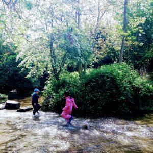 children walking in a woodland stream