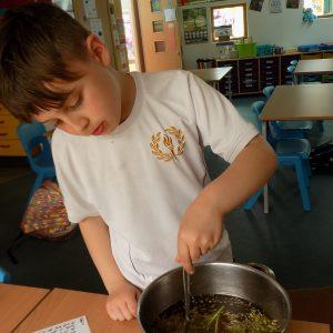 boy making elderflower cordial in a large saucepan