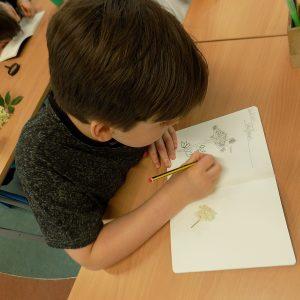 boy drawing flowers