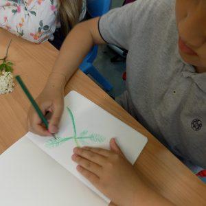 child drawing elderflowers