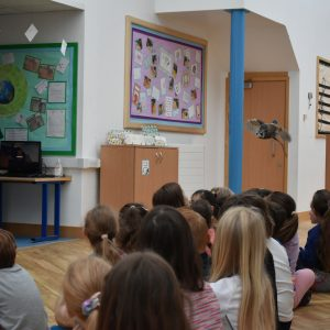 school class watching an owl flying