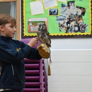 school boy holding an owl