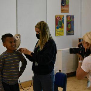 owl photo shoot with school boy