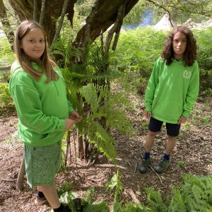 2 girls with green hoodies on collecting ferns in the woods