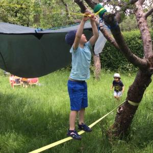 boy in forest school