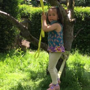 child balancing on tree tightrope